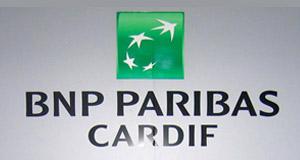 TEB BNP PARİBAS CARDIF
